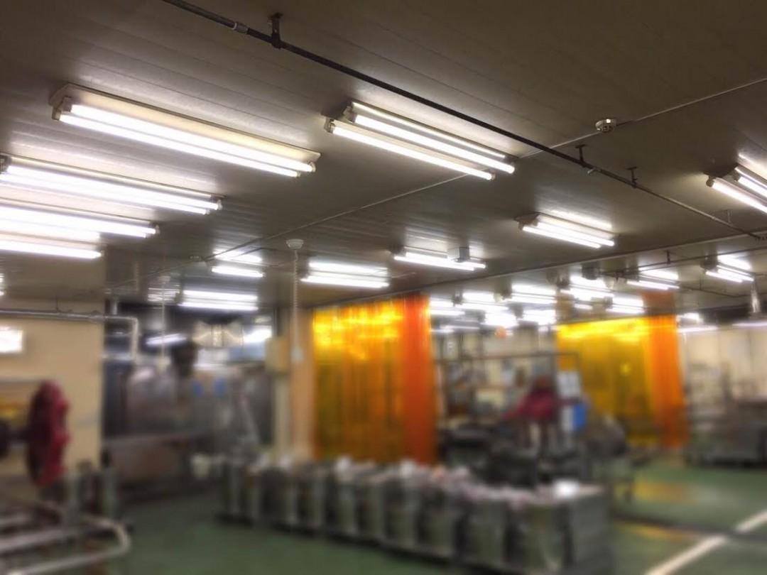 食品工場設置事例